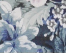 花園藍 (Garden_Blue)