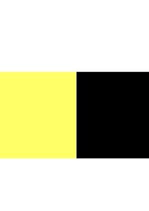 黃黑 (YELLOW_BLACK)