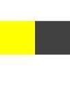 黃深灰 (Yellow / Gray)
